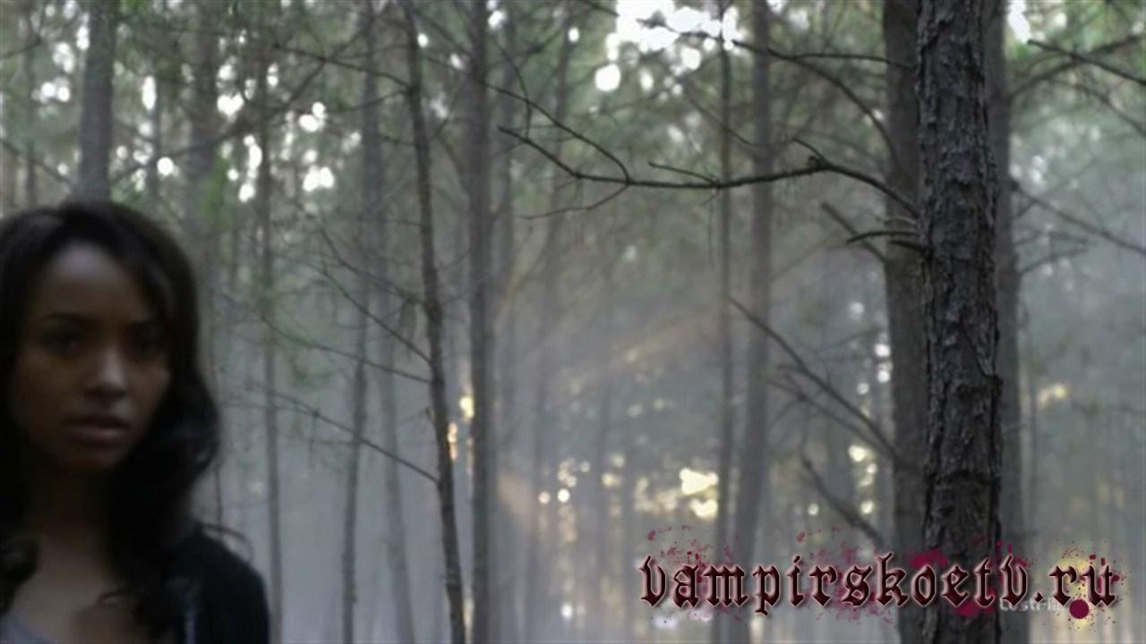 дневники вампира 1 сезон 11 серия-3